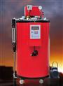 供應全自動液晶顯示燃氣蒸汽鍋爐