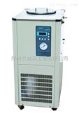 DLSB-10L/-30℃低温冷却液循环泵
