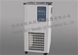 DLSB-10/20上海低溫冷卻液循環泵DLSB-10/20