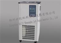 上海低温冷却液循环泵DLSB-10/20