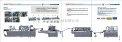 DPH260H-XWZ200固体制剂生产联动线
