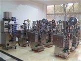 DXDC-上海運馳顆粒全自動定量包裝機械