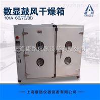 不锈钢数显鼓风干燥箱101A-8B