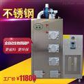旭恩節能30KG生物質顆粒蒸汽發生器洗滌